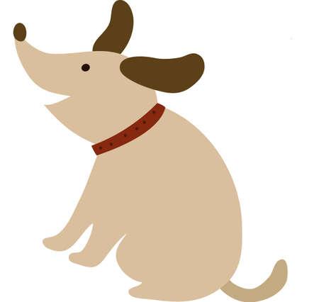 barking: La vista del cane