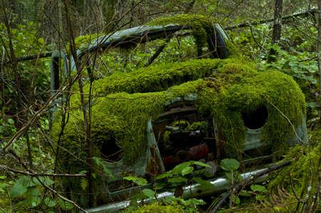 oxidado: Un coche antiguo abandonado cubierto de musgo