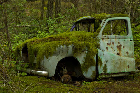 rusty: Abandoned old car covered in moss in the forest Stock Photo