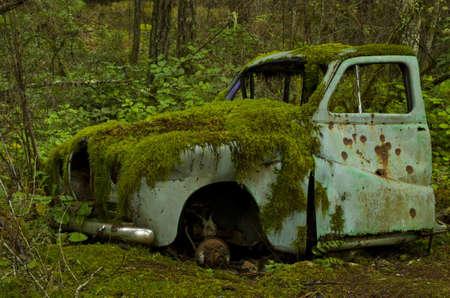 oxidado: Coche abandonado viejo cubierto de musgo en el bosque