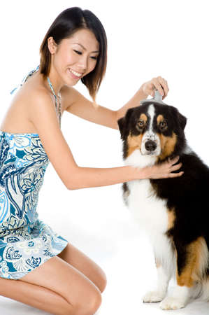 A young woman brushing her pet dog photo
