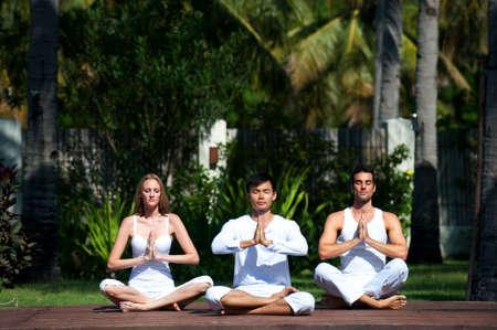 mujer meditando: Un atractivo grupo de personas que practicar yoga al aire libre