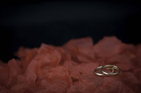 Two wedding rings on red rose petals and black background Stock Photo