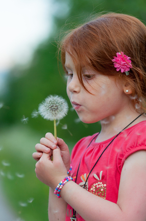 Red hair female child blows on a flower (Taraxacum) with white seeds