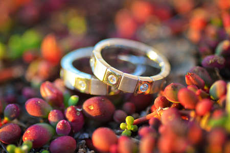 rite: Vintage wedding rings lie on a background of green buds. Gold and diamonds