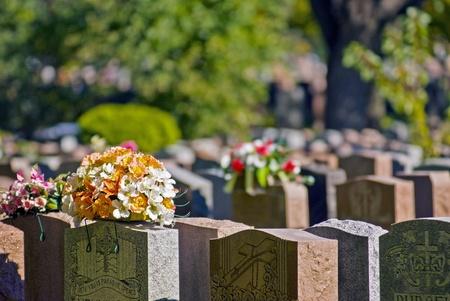 Montreal cemetery Stock Photo