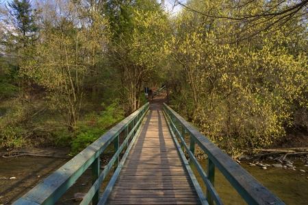 Bridge Reklamní fotografie