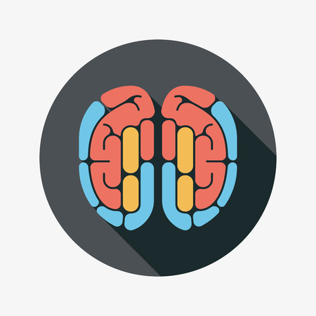 on the comprehension: brain flat icon with long shadow