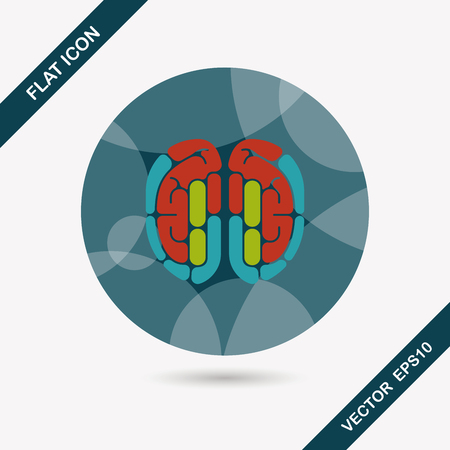 gyrus: brain flat icon with long shadow