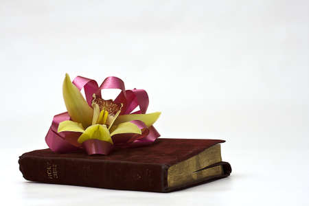 An orchid Easter corsage with ribbon lying on a worn Holy Bible