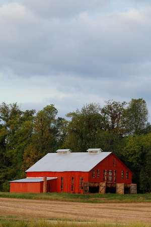 A bright red barn full of tobacco with doors open.  Copyspace at the top. Stock Photo