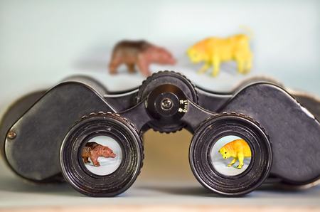 Binoculars Looking at a Bear and Bull