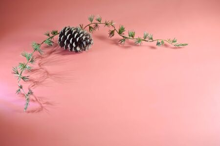 Pine Cone with Greenery on Pink Background