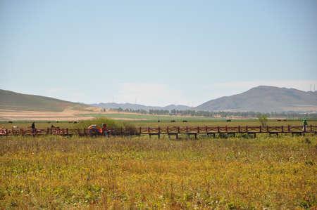 Autumn grassland, Inner Mongolia