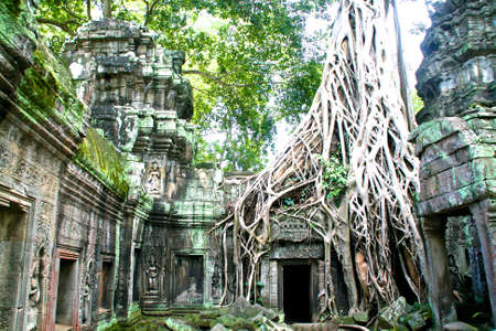 siem: Cambodia - Siem Reap - Angkor