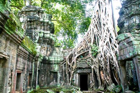Cambodia - Siem Reap - Angkor