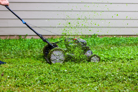 Push lawnmower in action with grass flying around/ Lawncare concept
