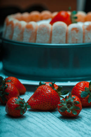 Home made Charlotte or Diplomat cake with strawberries and lady fingers on a wooden table Moody Dark shot with teal and red filter