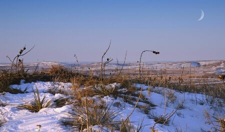 lanscape: Prairie lanscape during winter complete with snow and moon. Stock Photo