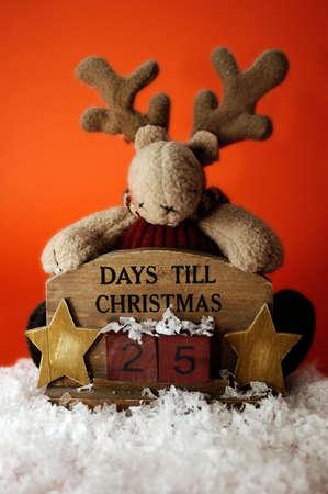 A reindeer counting down to christmas. Twenty-five days to christmas.