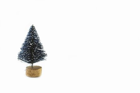 An isolated christmas fir tree with negative space for text or other.