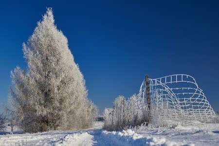 冬の風景 写真素材