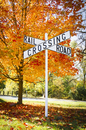 A railroad crossing sign with a brightly colored autumn tree; Delware and Raritan Canal State Park, New Jersey photo