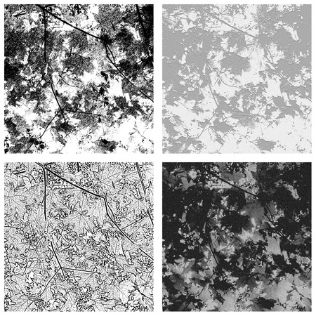 grunge textures: Maple leaf textures in grayscale; use in photoshop as brushes, patterns, or backgrounds; easy to clip and use in various designs