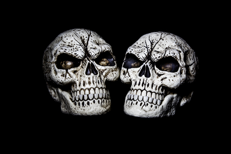 Two fake skulls are isolated on a black background