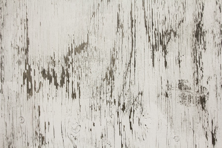 A painted piece of plywood shows weathering; whitewashed surface; texture; good background