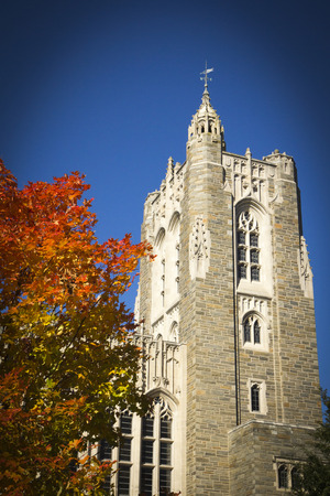 ivy league: A beautiful Maple tree boasts fall foliage at Princeton Universtiy in New Jersey; the beautiful architecture of Princeton is seen in the background; beautiful blue sky