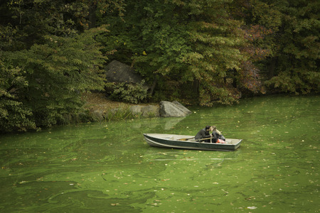 A couple gets engaged while on a rowboat in Central Park, New York City  Actual proposal  Stock Photo - 27929564