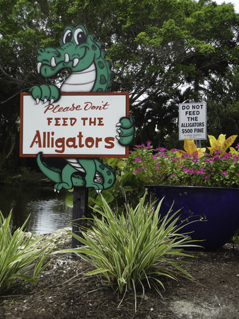 A sign in Sanibel Island Florida warns people not to feed the alligators   A second sign in the background shows the fine for feeding the alligators  Photo taken in July, 2013