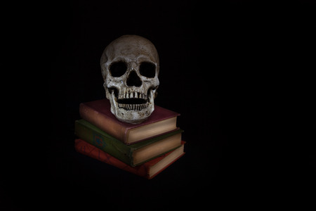 A vintage skull sits beside a stack of old novels; image created with a light painting technique photo