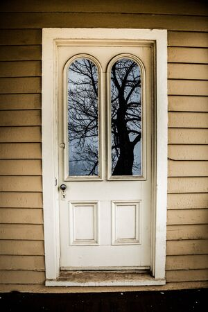window panes: An old door with two window panes reflects a creepy looking tree.
