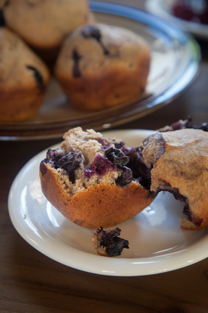 A whole blueberry muffin, torn apart, sits on a white plate on a dark wood tabletop.  A tray of muffins along sits in the background.