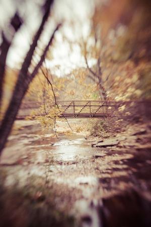 suspenso: Puente a través de las maderas Foto de archivo