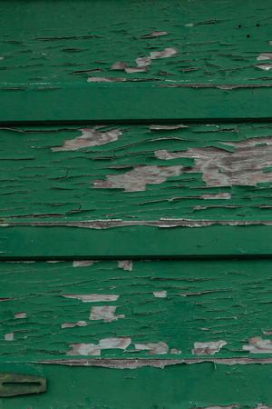 suspense: Peeling green paint on old wood siding; vertical image