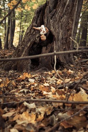 dode bladeren: Griezelige pop achtergelaten in het bos Stockfoto