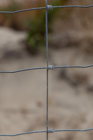 wire fence: Wire Fence Closeup