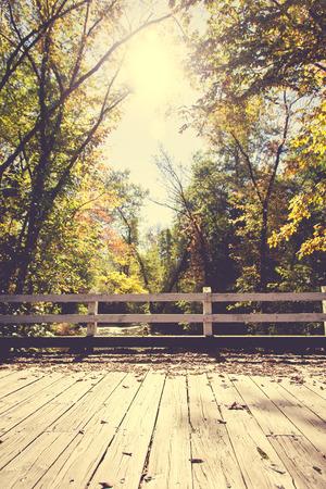 footbridges: Autumn trees behind a wooden bridge