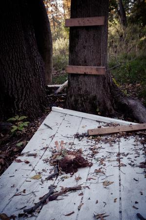 dode bladeren: Doll verlaten door geïmproviseerde boomhut Stockfoto