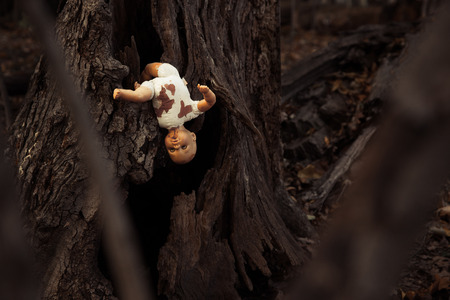 woodland  horror: Abandoned doll in woods