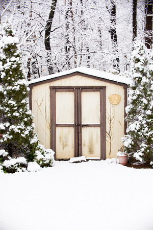 winter storm: A shed and surrounding trees are covered in snow after a winter storm.