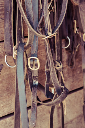 Various horse tack items hang in a stable.