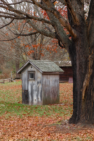 An old shed sits beneath a tree on a farm during autumn.