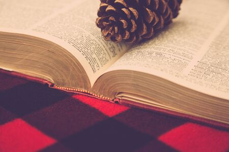 A dry pinecone sits on top of an old vintage dictionary on a red and black plaid background.
