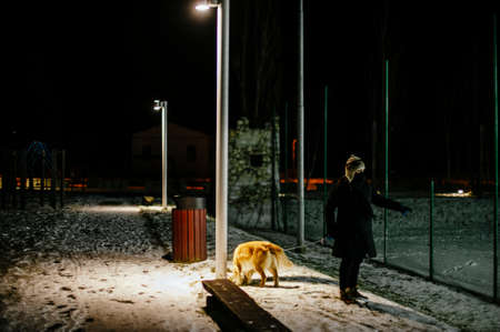 woman with hat walks at night with the dog on a leash lit by the light of a street lamp, on the snow-covered avenue Standard-Bild