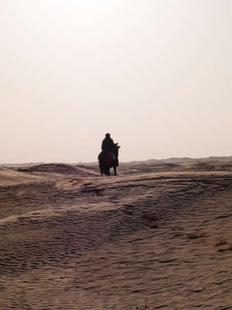 Arabian knight with traditional clothes in the desert at sunset, Douz Tunisia, sahara desert 스톡 콘텐츠