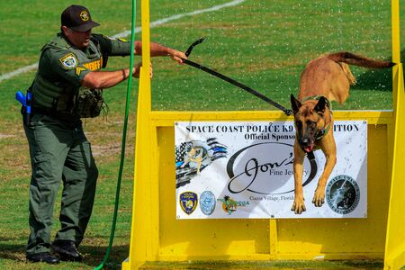 Cocoa, Florida / USA - October 12, 2019: A Florida Sheriff's K9 team leaps over a barrier and through a water obstacle during the Space Coast Police K9 Competition. Archivio Fotografico - 132890759
